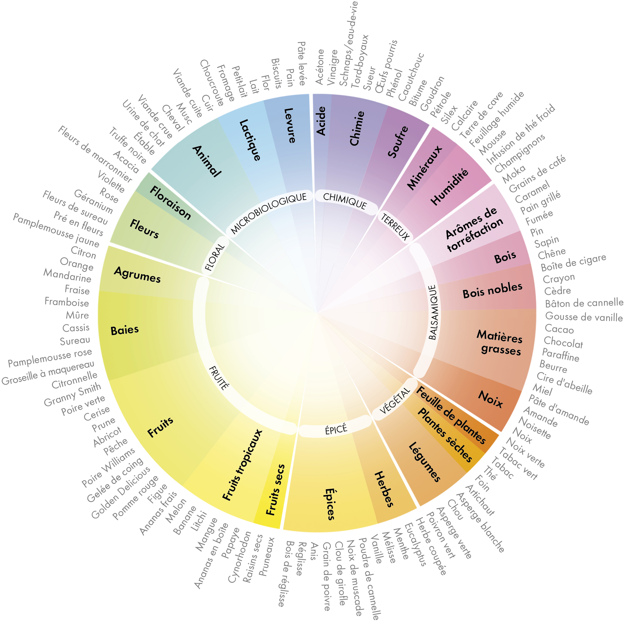 Wheel of aromas and flavours FR