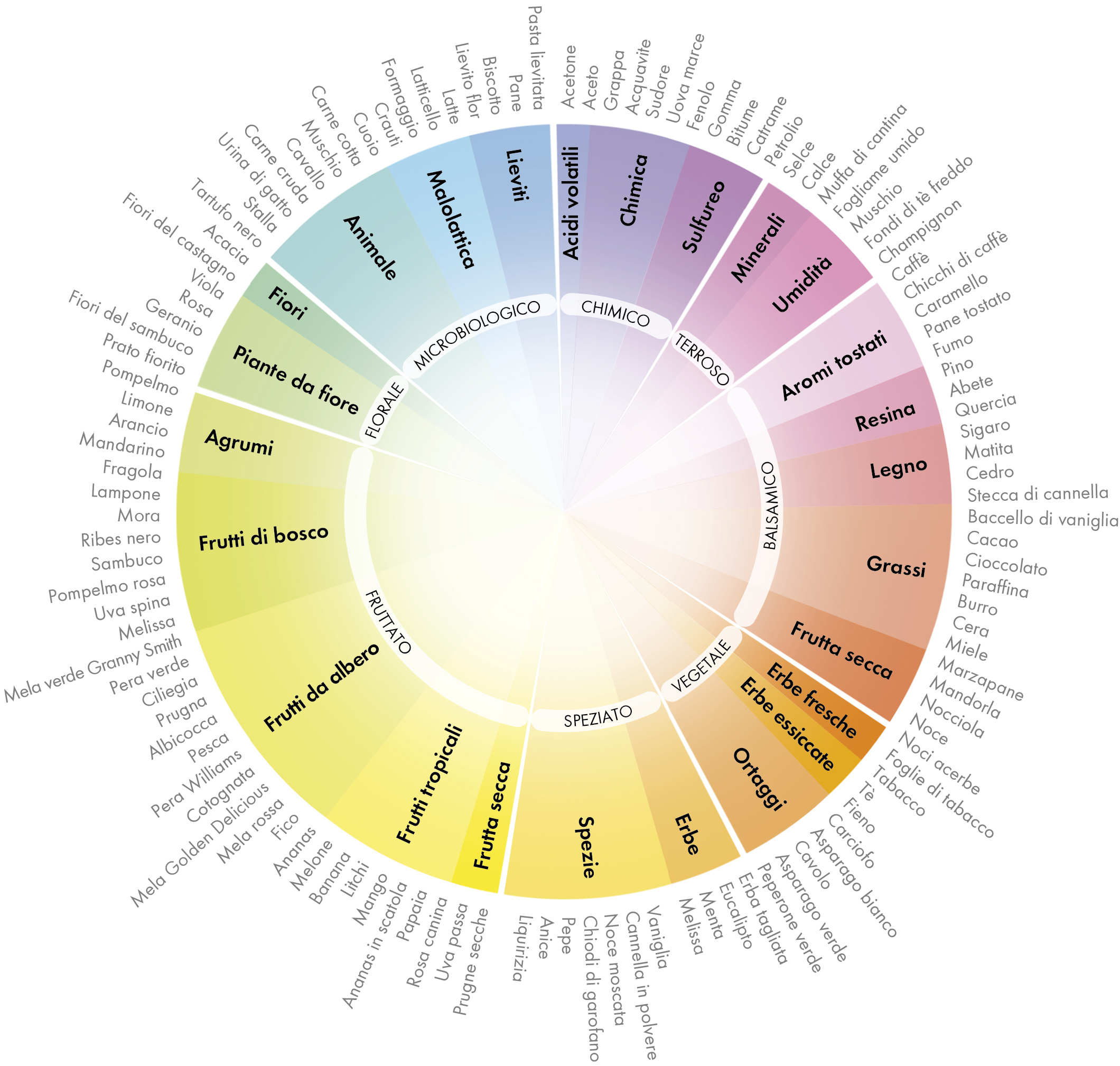 Wheel of aromas and flavours IT